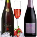 Bottega Fragolino : vino e spumante